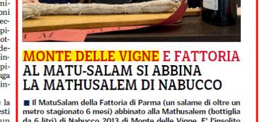 MONTE DELLE VIGNE E FATTORIA
